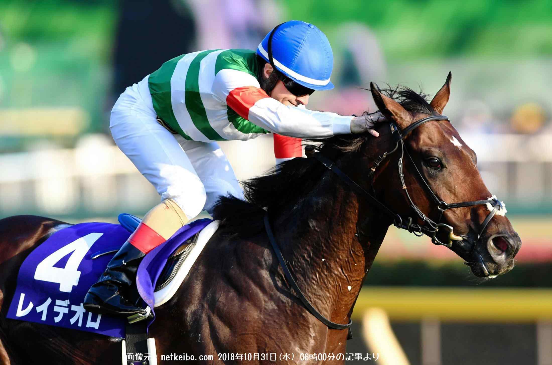 2018有馬記念で人気1位のレイデオロという馬の写真画像