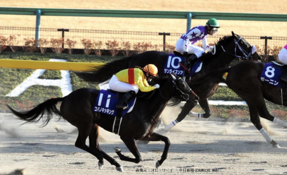 藤田菜七子騎手初G1のフェブラリーSで惜しくも5着