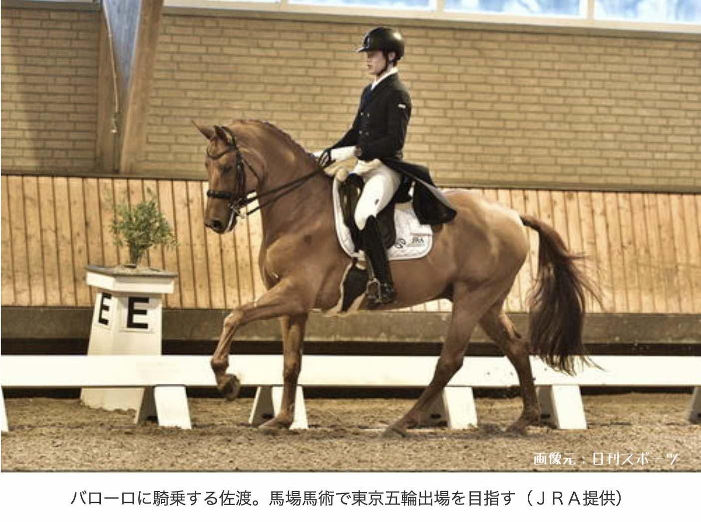 オリンピックの馬術とは。競馬との違い