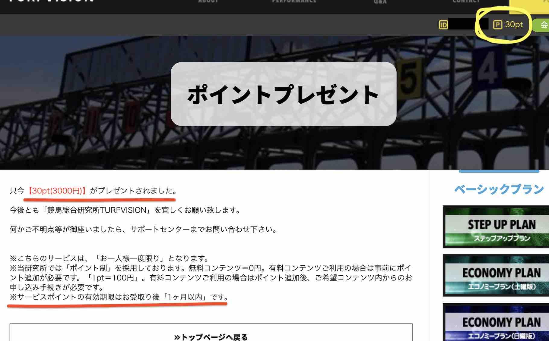 ターフビジョンという競馬予想サイトのポイント還元30pt