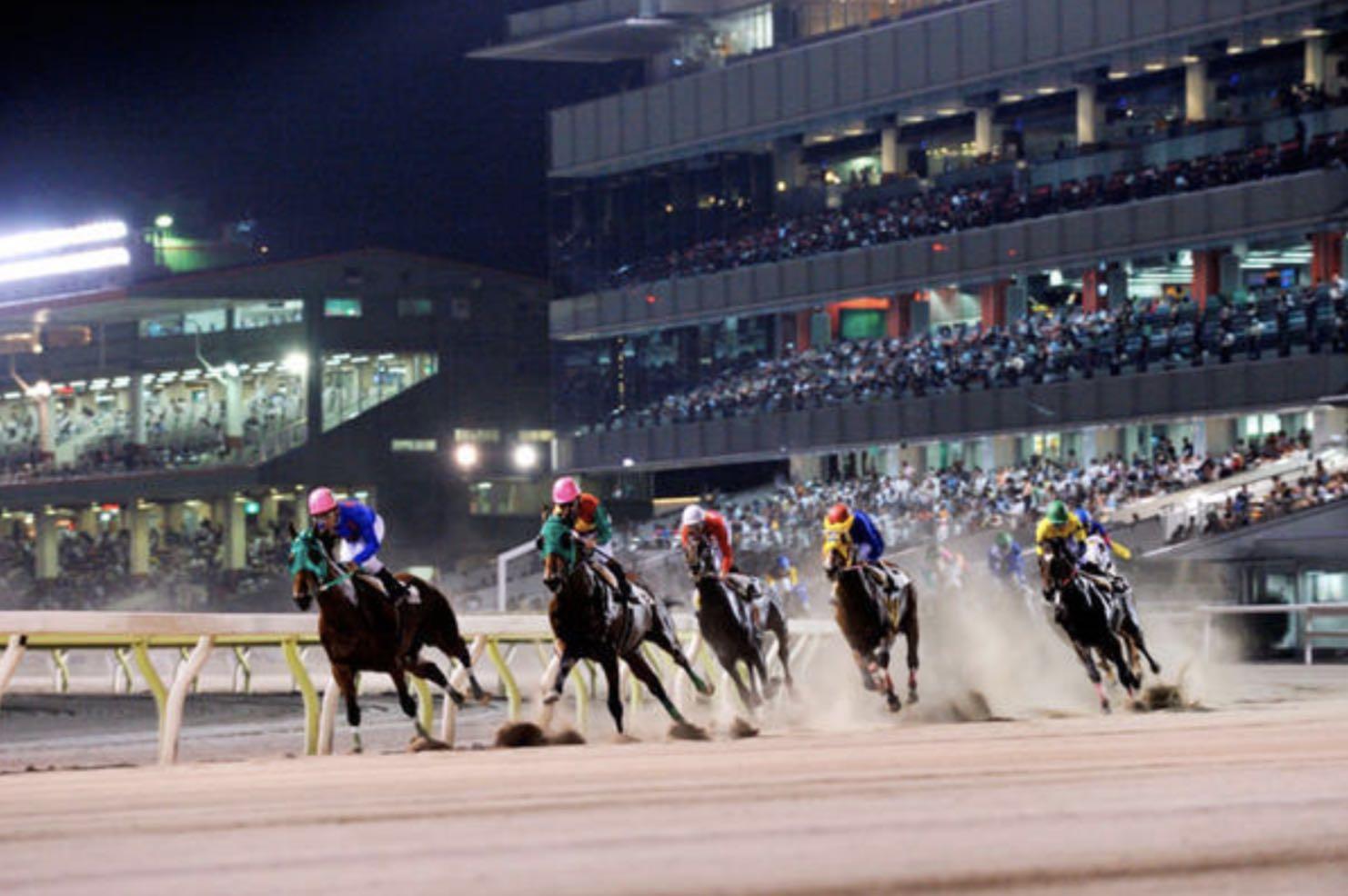 地方競馬の魅力と言えばナイター開催