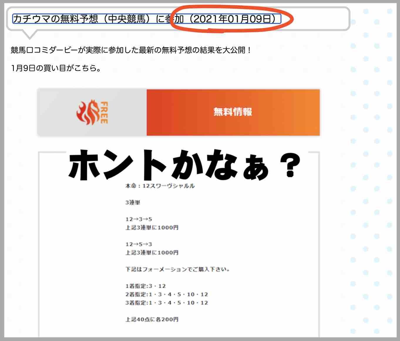 カチウマという競馬予想サイトを検証するサイト