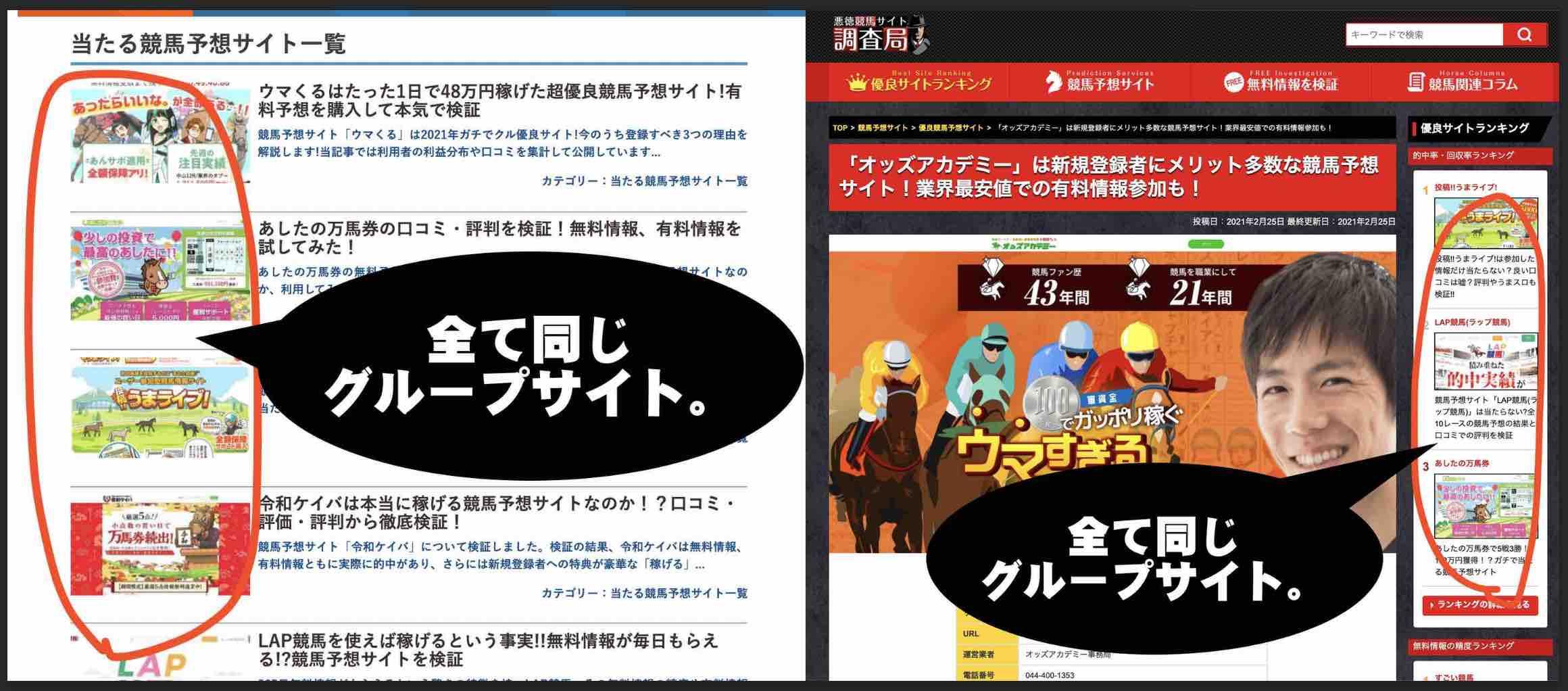 オッズアカデミーという競馬予想サイトを高評価する検証サイト2つの共通点