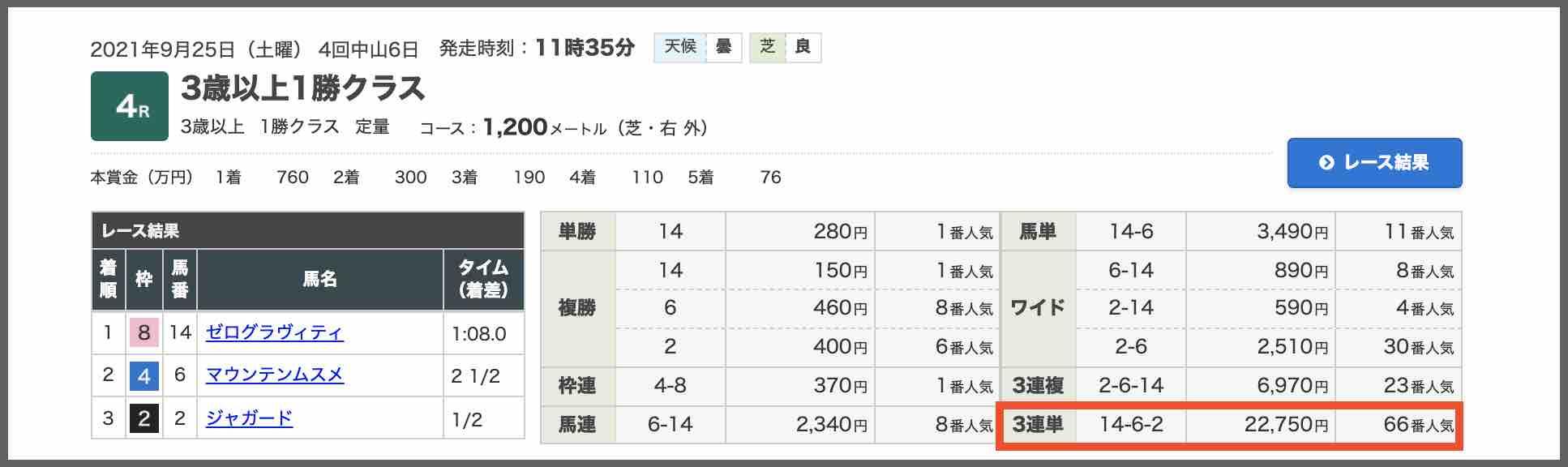 血統シックス(血統6)と言う競馬予想サイトで的中した配当