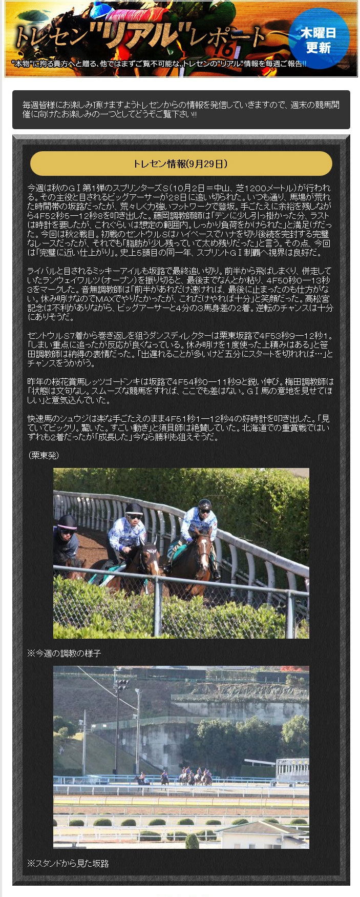 ターフビジョンという競馬予想サイトのトレセンリアルリポートの無料情報
